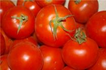 Tomate ronde (Le Jardin d'Issards)